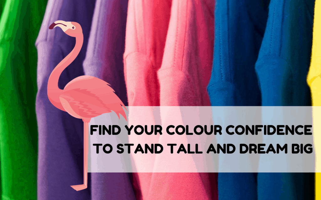 Using Colour With Confidence: Colour Analysis: Your Colour Confidence To Stand Tall And